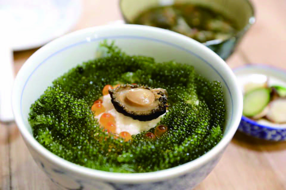 台灣/北海岸/沖繩海葡萄丼/2k週末食堂