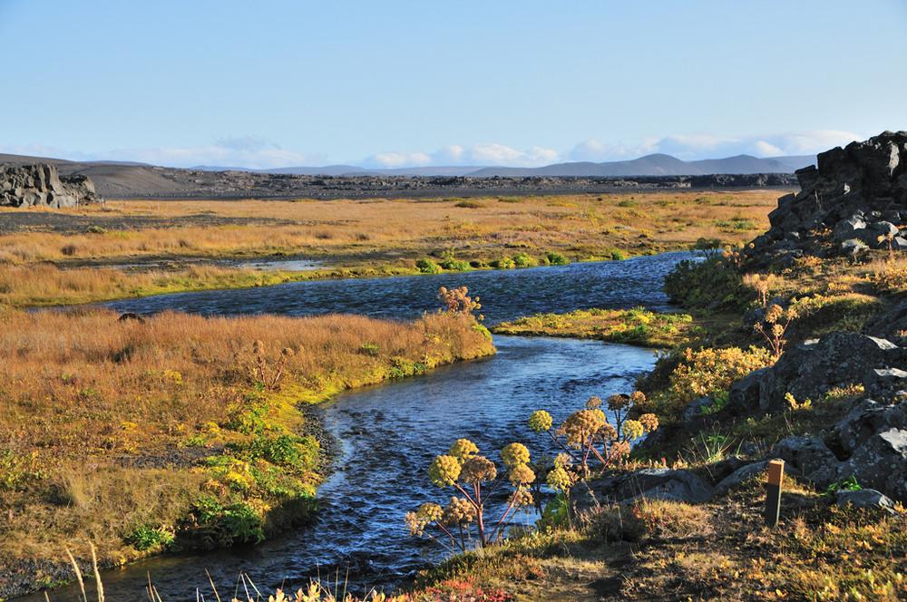 Herðubreiðarlindir/冰河國家公園/冰島/旅遊/世界遺產/岩漠綠洲