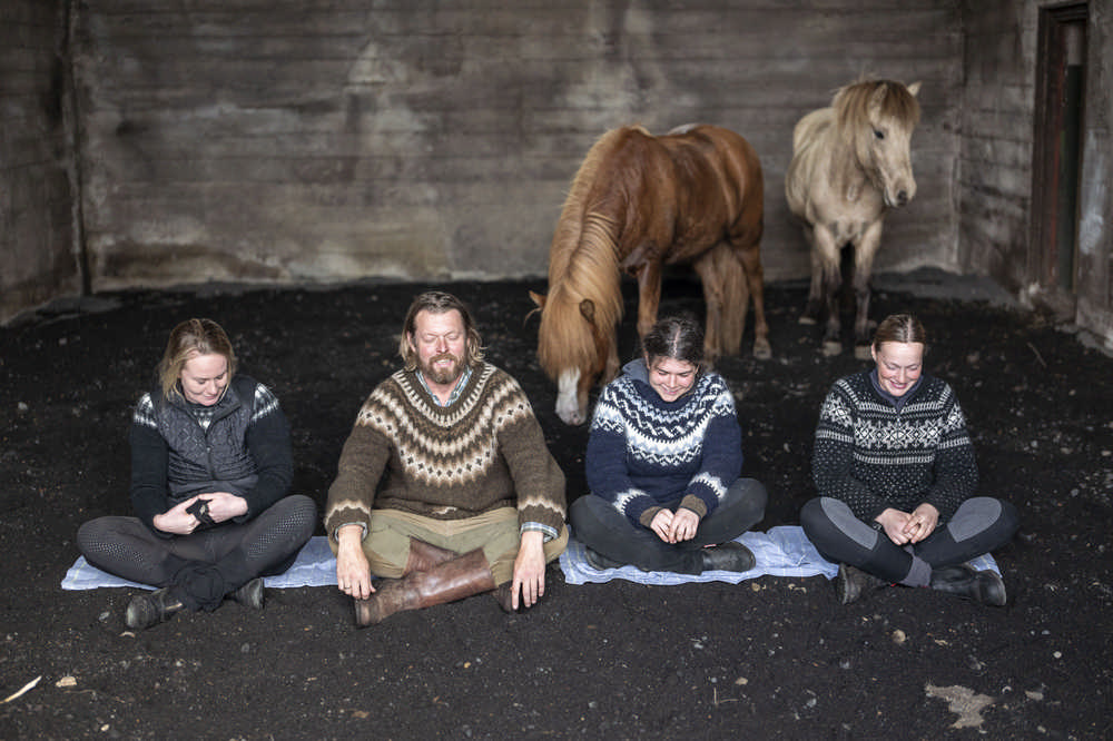 Black Beach Riding Retreat/冰島/冰島馬/Airbnb/冥想