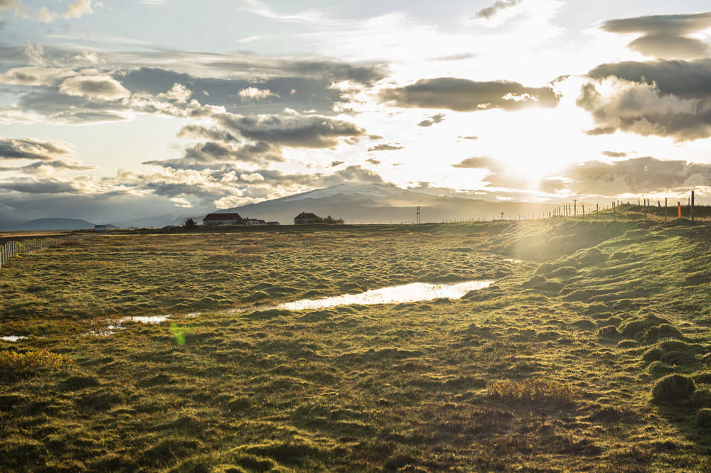 Black Beach Riding Retreat/冰島/冰島馬/Airbnb/早晨