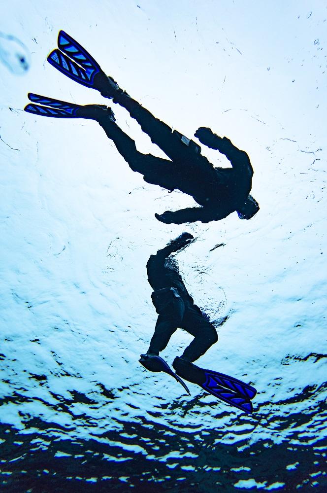浮潛/冰島旅遊/Airbnb/Snorkel in Silfra/浮潛板塊大裂隙