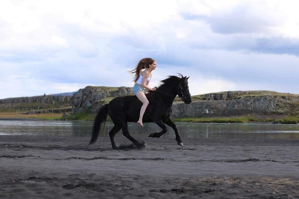 Hotel Húsafell/國家地理認證/冰島探險小屋/最獨特度假小屋/探險奢旅/騎馬