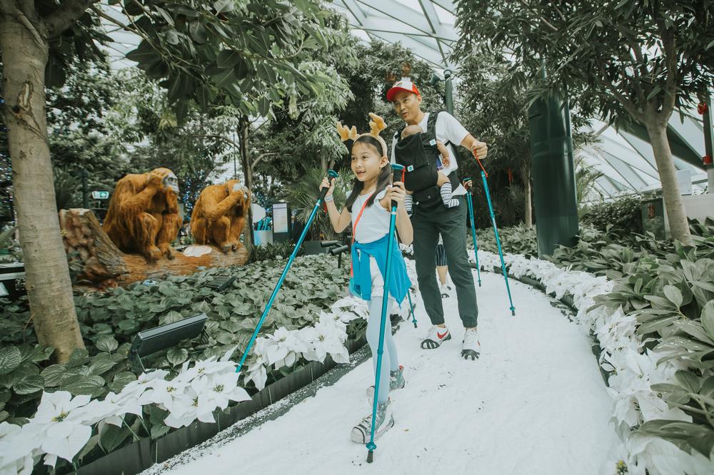 樟宜機場/新加坡/旅遊/冰雪奇緣/迪士尼