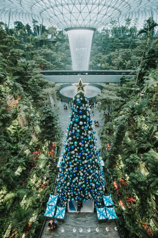 樟宜機場/新加坡/旅遊/冰雪奇緣/星耀樟宜/耶誕樹