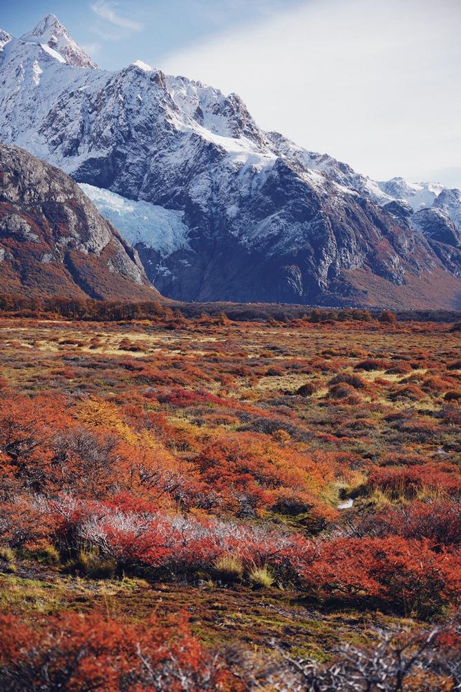 健行/Patagonia-Fitz/深度旅遊/Tai Tai LIVE WILD/台灣