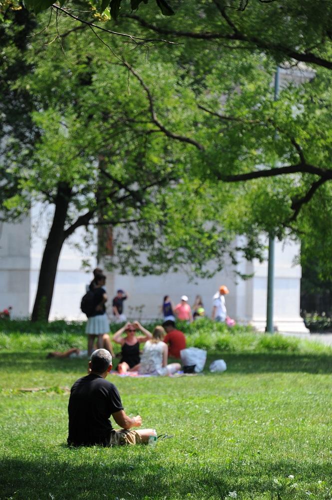 曼哈頓/紐約/華盛頓廣場/草地/紐約大學