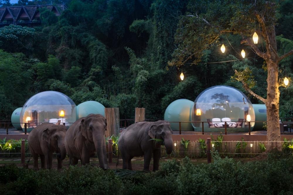 Anantara Golden Triangle/金三角象園安納塔拉度假酒店/雨林泡泡/清萊/泰國