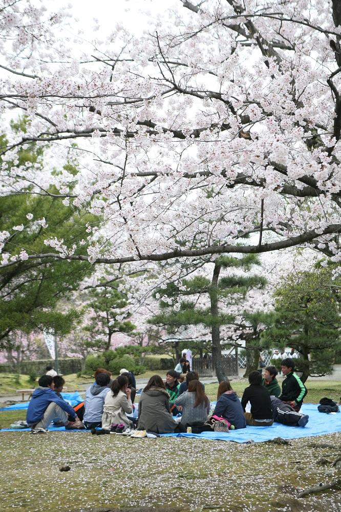 日本自由行/福岡/大濠公園周邊/舞鶴公園