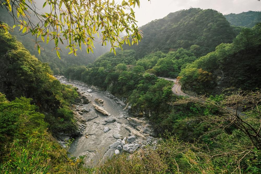 步道健行/花蓮/綠水合流步道/森林/溪流/山谷