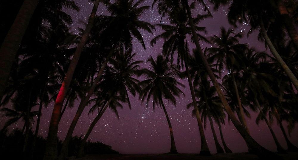 阿麗拉曼吉斯/峇里島逃逸之旅/康體養生/水療/瑜珈/隱世/絕美星空