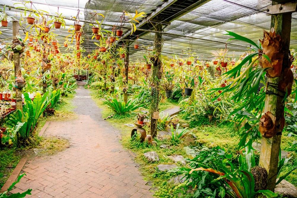 波的農場/宜蘭輕旅行/深度旅遊/台灣