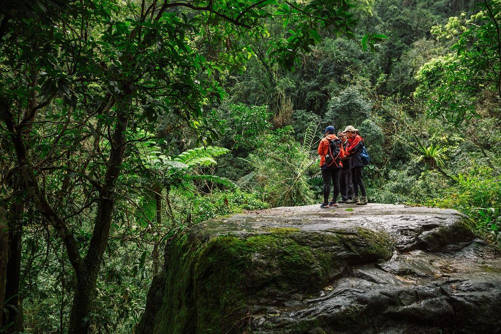 宜蘭/健行/松羅國家步道/原始自然/台灣的亞馬遜雨林