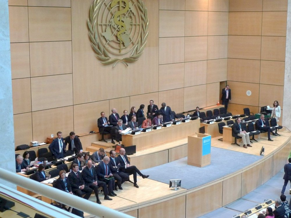 國際會議/世界衛生組織WHO