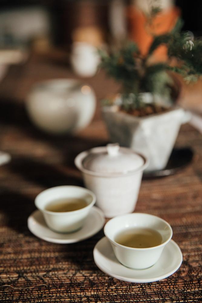 茶/發現山茶/六龜/高雄