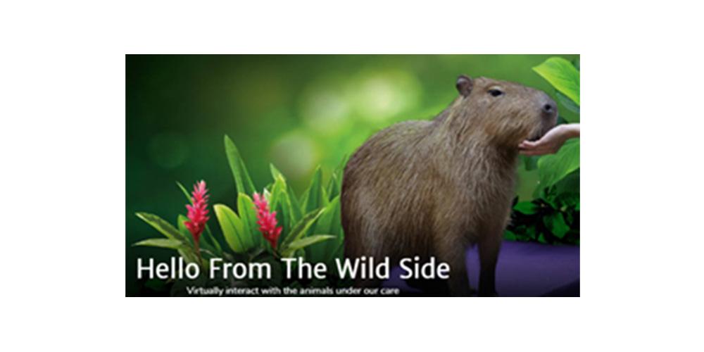 新加坡野生動物保育集團/新加坡旅遊局