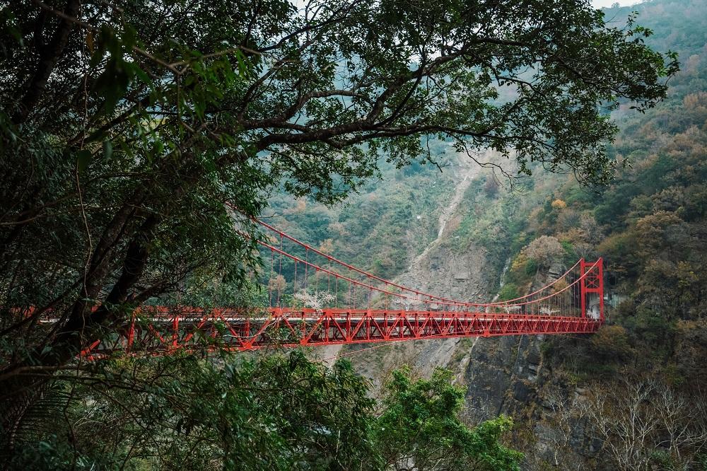 巴陵吊橋/巴陵古道/桃園/台灣/深度旅遊