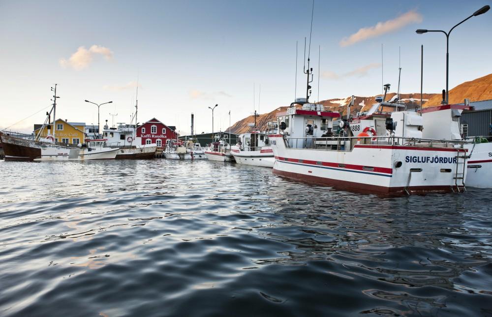 冰島「鲱鱼之都」錫格呂菲厄澤