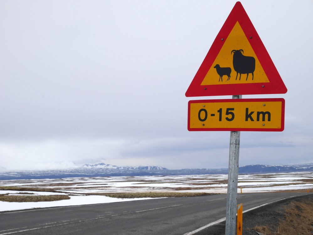 冰島公路路標