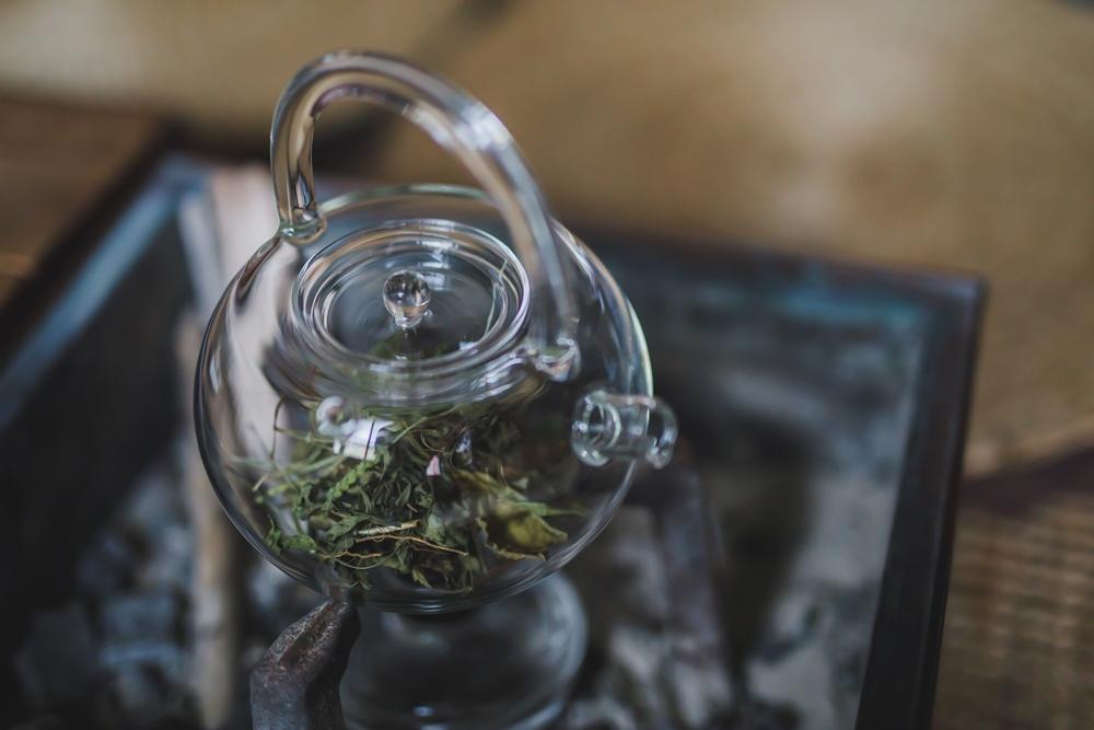 雜草茶/雜草稍慢/植物/大自然/土地/台北/台灣