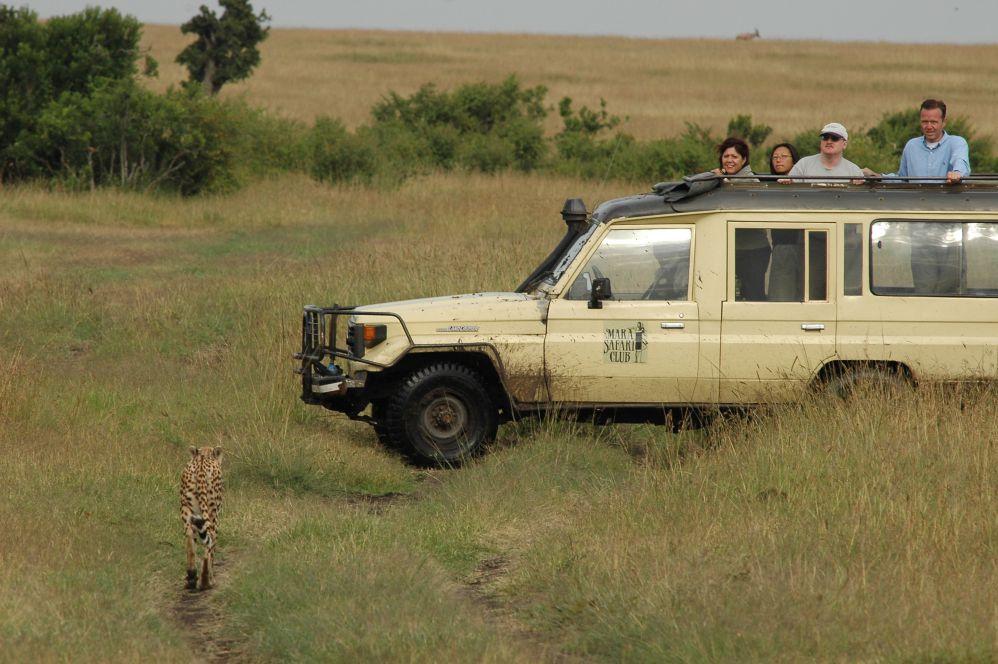 肯亞/非洲