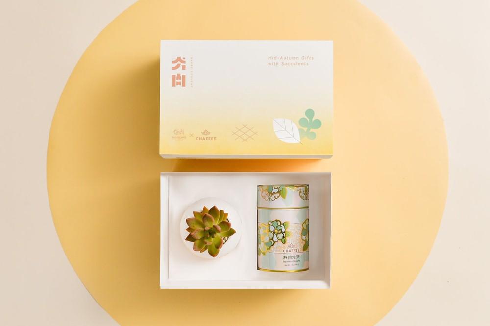 滿月多肉盆/靜岡焙茶/夯肉/CHAFFEE/有肉/中秋節禮盒/台灣