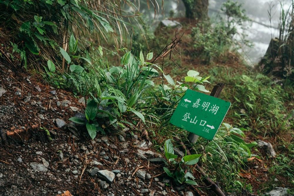 三叉山/步道標示/台東/嘉明湖/登山/健行/嘉明湖國家步道/台東旅遊