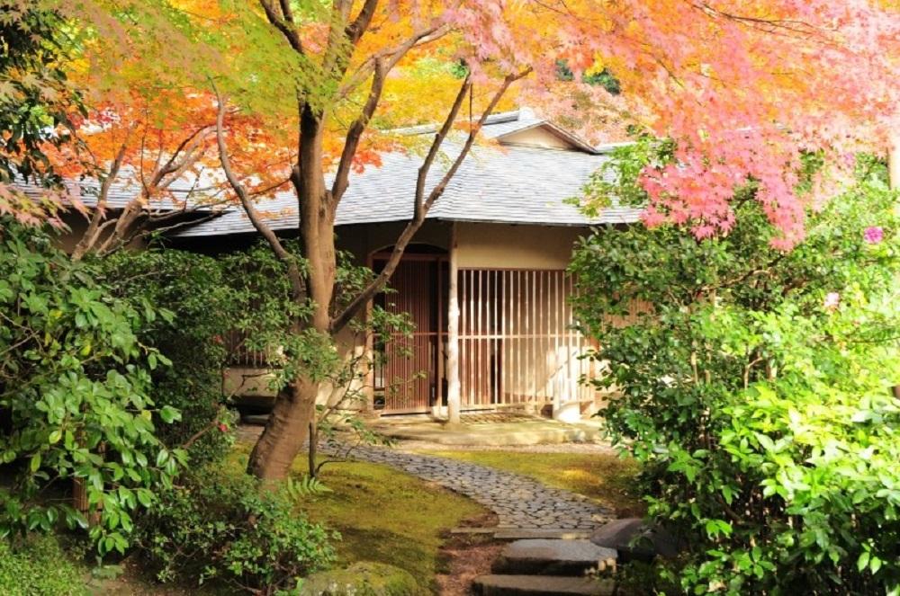 The Prince 京都寶池/飯店/旅遊/京都/日本
