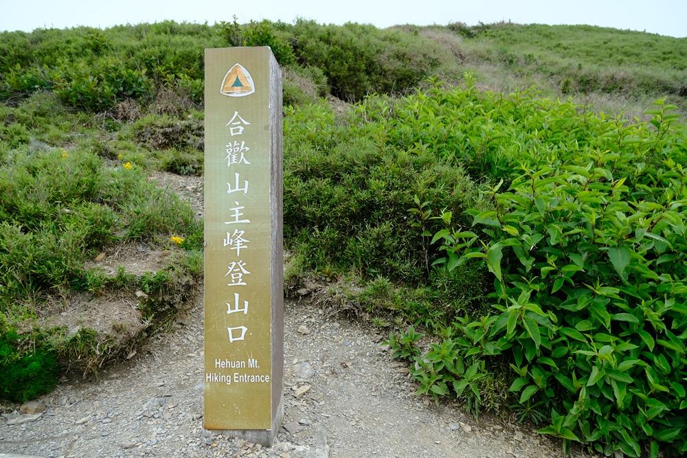 主峰登山口/合歡主峰/環景散步道/南投旅遊/合歡群峰/深度旅遊/台灣步道