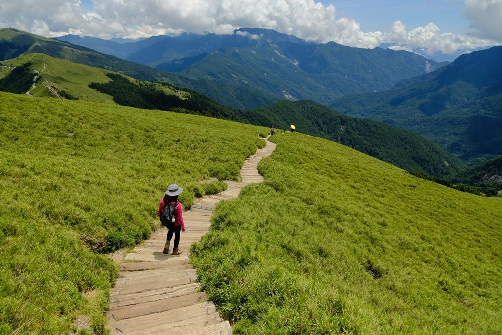 登山步道/合歡東峰/南投旅遊/合歡群峰/深度旅遊/台灣步道