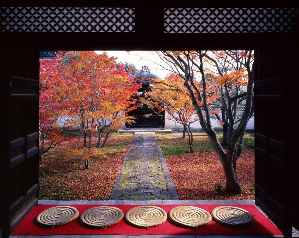 賞楓/2021米其林/2020最佳十大城市/Condé Nast Traveler/京都/日本
