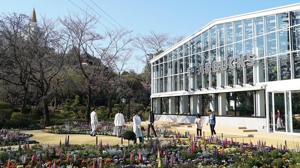 日本/東京旅遊/讀賣樂園/HANA・BIYORI/星巴克