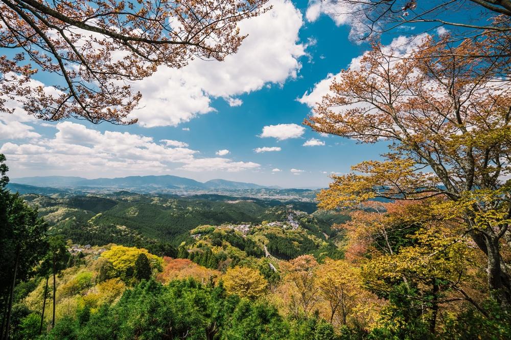 紀伊半島/特級列車島風號伊勢/日本
