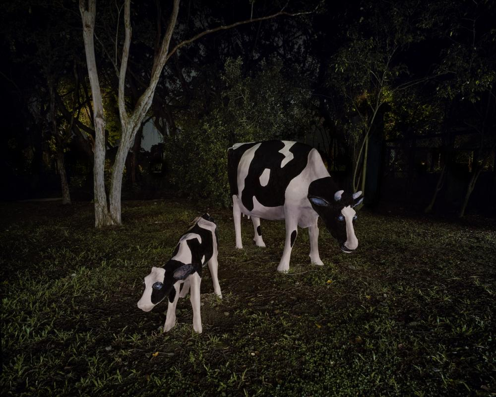 〈幽靈公園─母牛〉/禽獸不如--2020台灣美術雙年展/國立臺灣美術館/台中/台灣