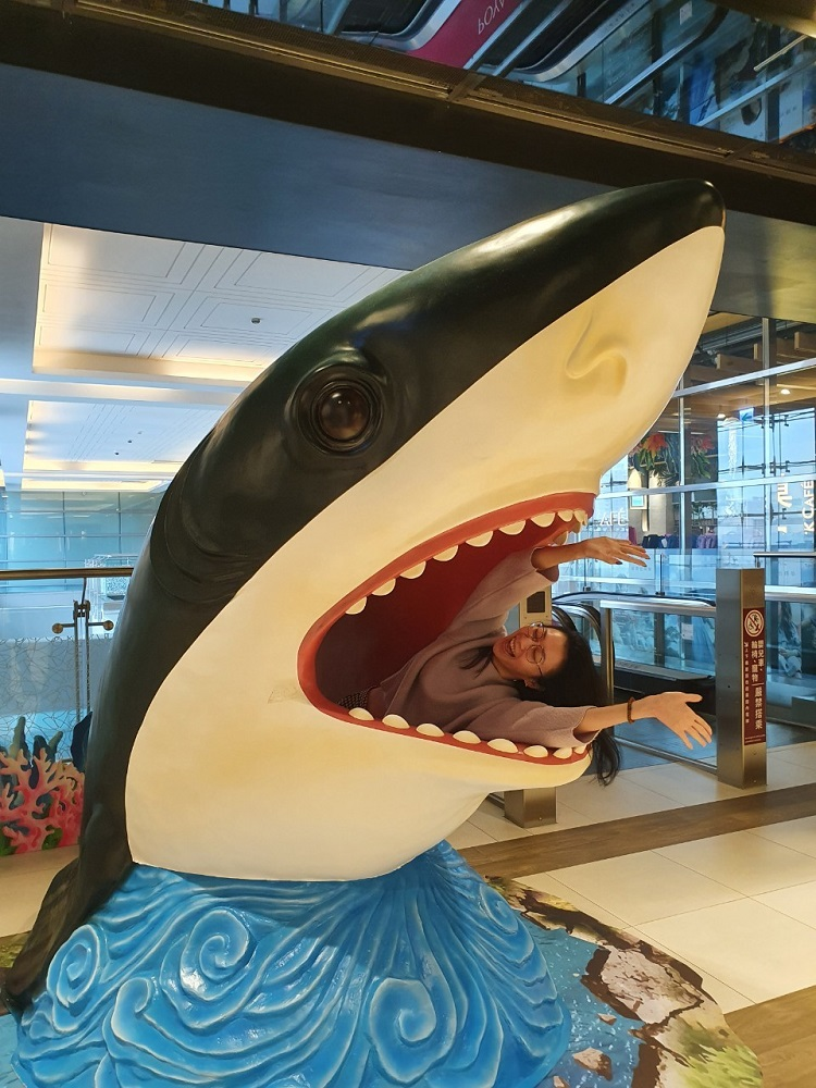 鯊魚裝飾/三樓打卡/CITYLINK/南港/台北/台灣