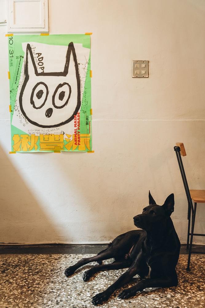 小狗/住牙/咖啡廳/台南/台灣