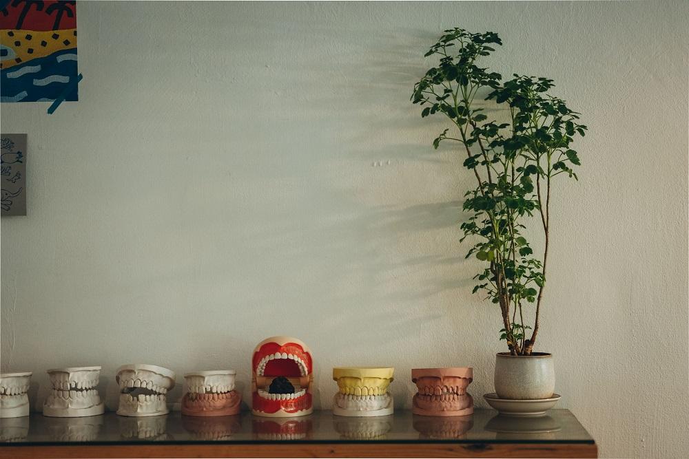 牙齒模型/擺飾/空間/住牙/咖啡廳/台南/台灣