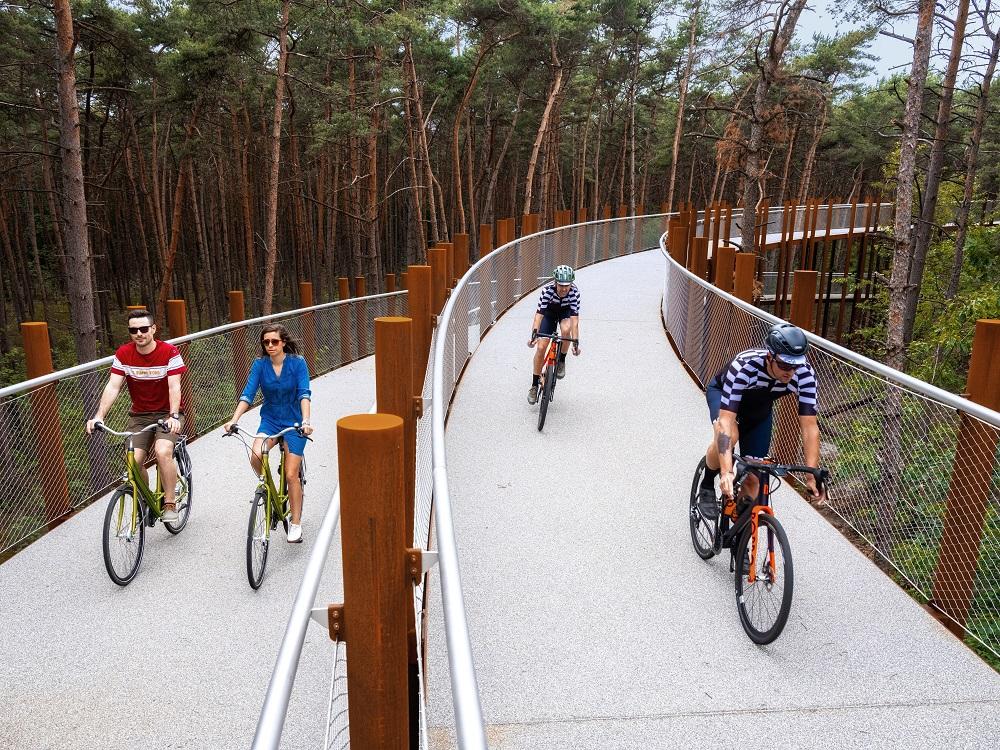 自行車道/旅遊/林堡/比利時