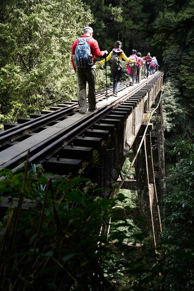 遊客/森林鐵道/步道/阿里山/嘉義/台灣