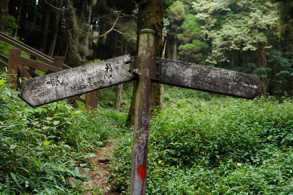 指標/森林鐵道/步道/阿里山/嘉義/台灣