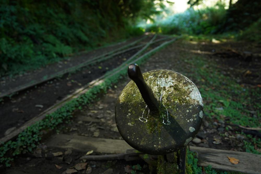 轉轍器/眠月線/森林鐵道/步道/阿里山/嘉義/台灣