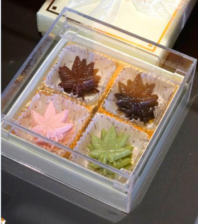 Leaf Memory/monloire/神戶/日本