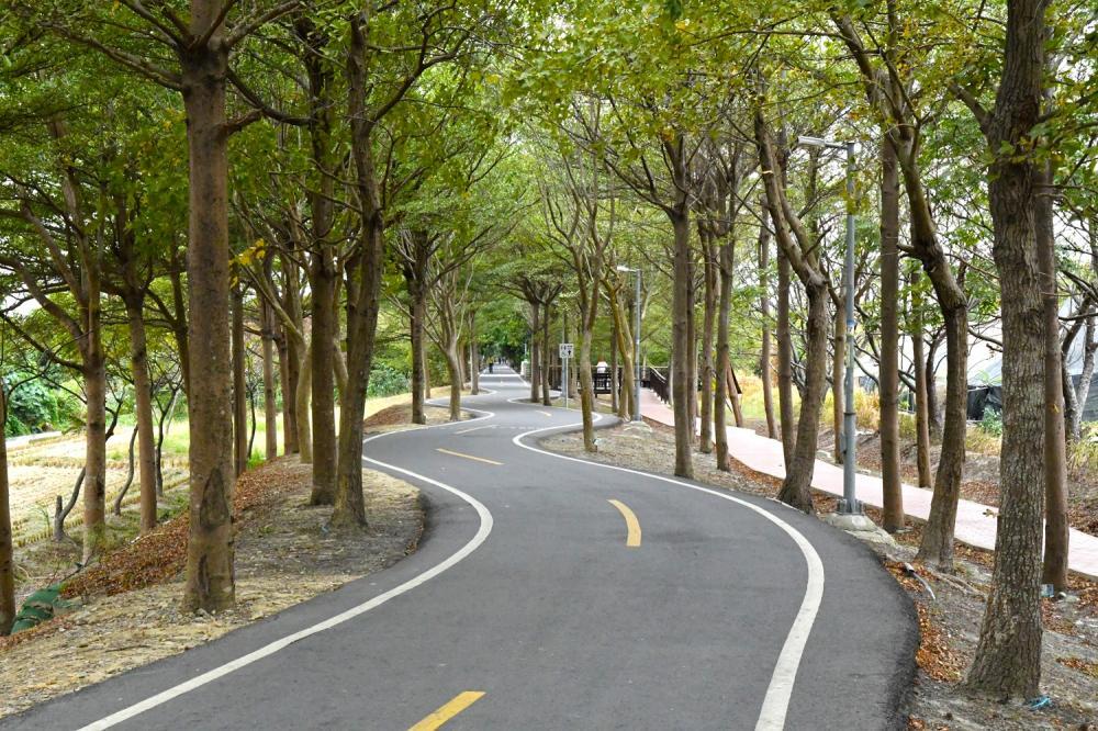 S彎道/潭雅神綠園道/旅遊/台中/台灣
