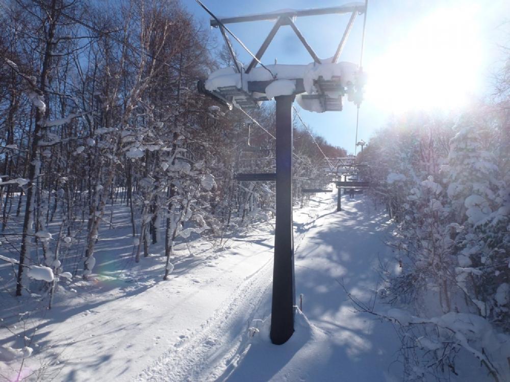 滑雪/主題旅遊/雪景/冒險葉/日本