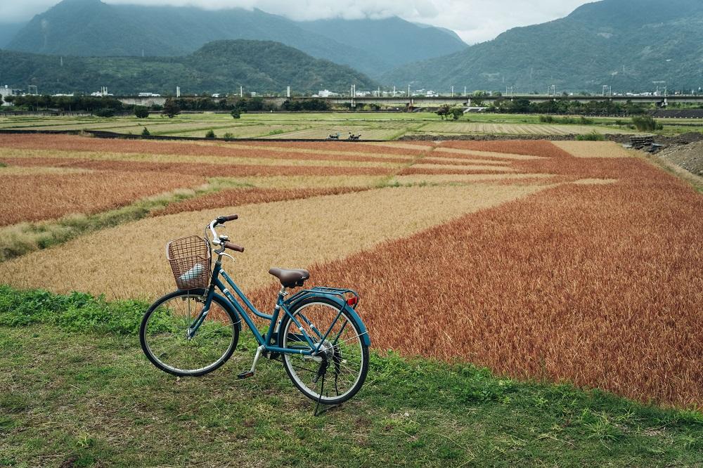 東里鐵馬驛站/單車/旅遊/花蓮玉里/台灣