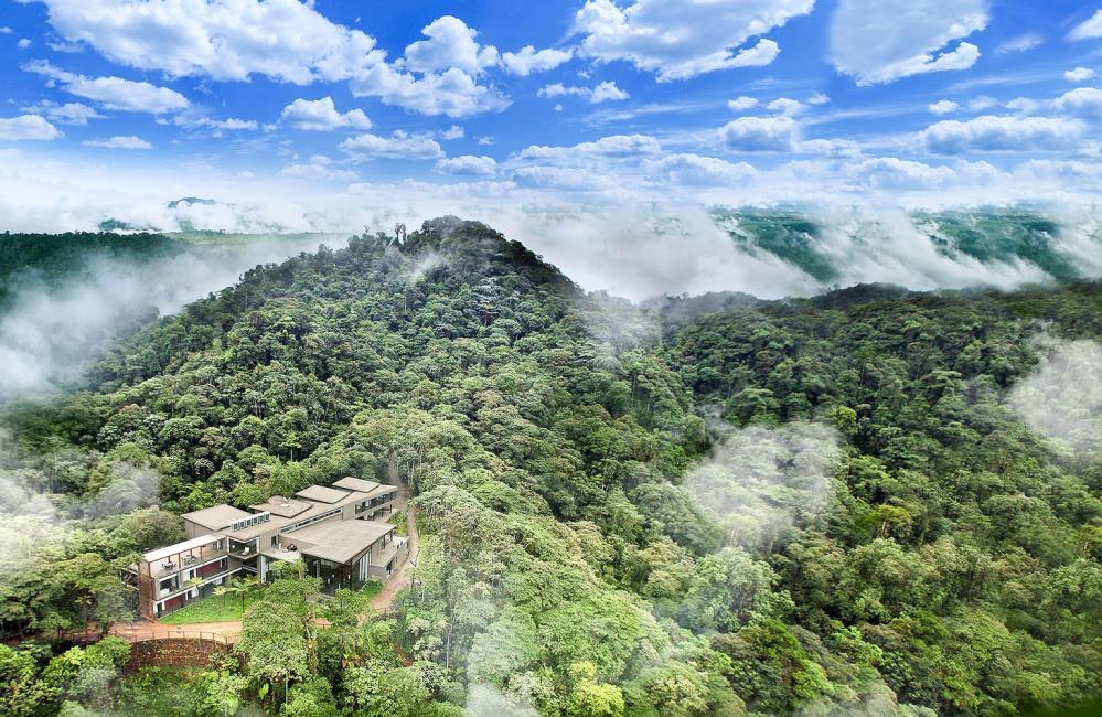 戶外/Mashpi Lodge/私人森林/旅館/厄瓜多