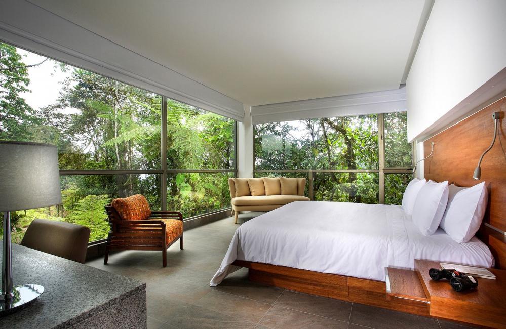 客房/Mashpi Lodge/私人森林/旅館/厄瓜多