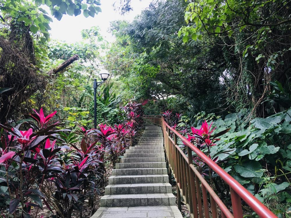 生態步道/觀音山蓄水池/旅遊/自來水園區/台北/台灣