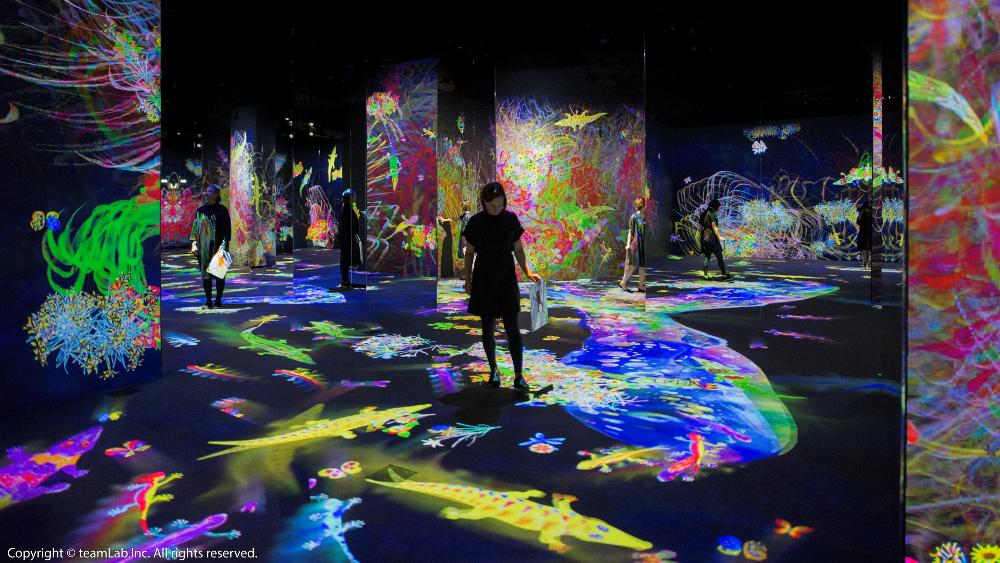 空間/teamLab Future Park未來遊樂園&與花共生的動物們/展覽/士林/台北/台灣