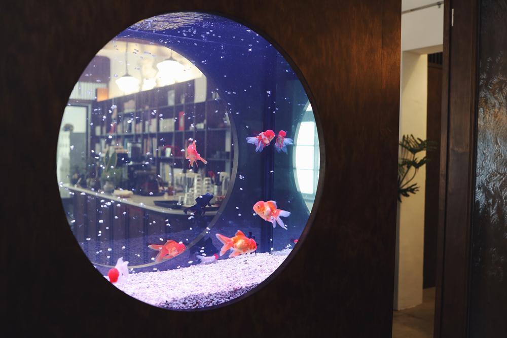 魚缸/空間/玉虫画室咖啡/畫室/咖啡館/台北/台灣