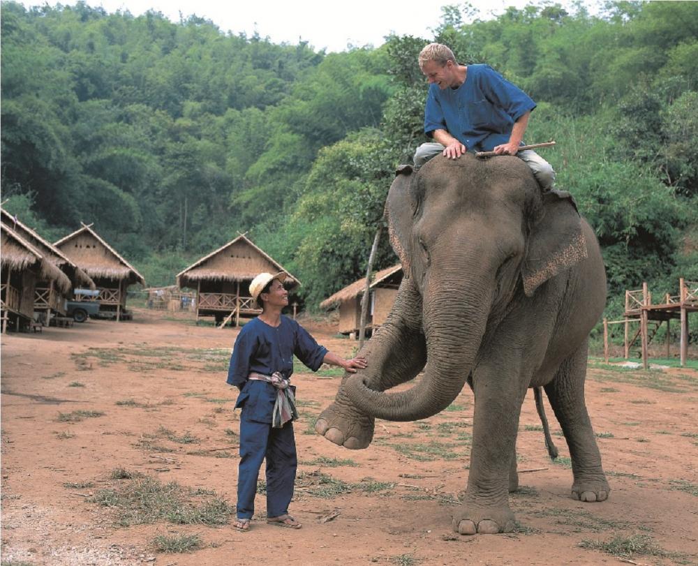 大象/Anantara Golden Triangle/綠旅館/泰國